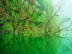 Furong (Hibiscus) River, Wulong karst, Chongqing, South China Karst