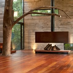 Add a swing. Fireplace By Paz Arquitectura. Plus having a tree inside your house always helps.