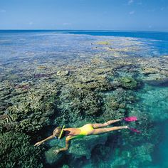 Great Barrier Reef. #Australia. So beautiful. Would love to visit Australia someday.