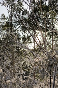 snowy mountains, australia by line x shape x colour