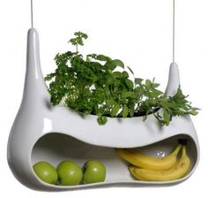 Herb garden & fruit bowl in one (& other nifty products on site)