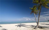 Tips for Hard Rock Punta Cana Resort
