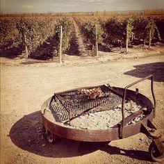 Vineyard-side asado at harvest season at Catena Zapata winery