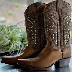67cbb3dfe5ecb Shop Women s Frye Brown size 7 Heeled Boots at a discounted price at  Poshmark. Description  NEW Bronze Frye Daisy Dukes Boots Size US.