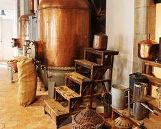 Toutes les huiles essentielles de A à Z, leurs vertus, bienfaits, utilisations et précautions d'emploi.