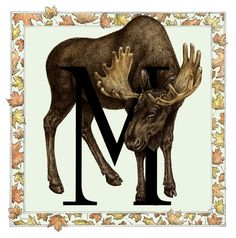 M is for Moose by Nicole Fazio (great border!) (see: http://www.nicolefazioillustration.com/illustration/)