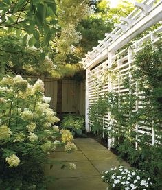 28 Awesome DIY Outdoor Privacy Screen Ideas with Picture It feels wonderful having a beautiful patio or backyard garden, but you still need some privacy on your own home. That's why it's necessary to have an outdoor privacy screen. Garden Privacy, Privacy Screen Outdoor, Privacy Landscaping, Backyard Privacy, Backyard Fences, Pergola Patio, Pergola Ideas, Privacy Screens, Pergola Kits