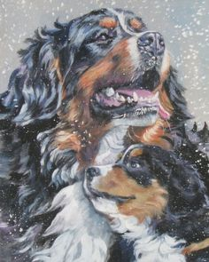 Bernese Mountain Dog art print CANVAS print of LA by TheDogLover, $39.99