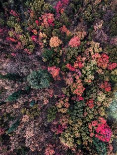 Stunning Drone Photography by David Waugh #inspiration #photography