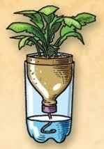 bloempot maken van een fles
