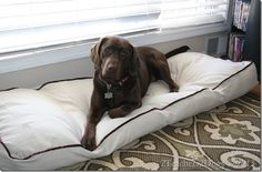 Homemade Super-Sized Dog Bed - only $8.00