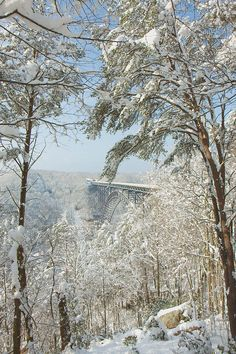 Print# snow has turned the New River Gorge area, into a winter wonderland. One that is wonderfully beautiful, and magical in its robes of white. New River Gorge, West Virginia, Places Ive Been, Landscape Photography, Almond, Bridge, Heaven, Mary, Wall Art