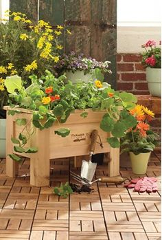 Grow Your Own Garden right on your balcony! From RedEnvelope.com #clientclosinggift