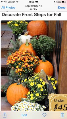 To have a fall outdoor decor to remember, we have gathered 13 DIY fall porch decor ideas that will beautify your front door for the upcoming holiday season. Fall Home Decor, Autumn Home, Diy Autumn, Autumn Bride, Autumn Style, Veranda Design, Autumn Decorating, Decorating Ideas, Front Porch Decorating For Fall