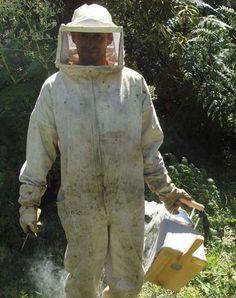 Brazilian Beekeeper