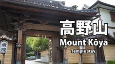 相关图片 Japanese Gate, Buddhist Temple, Temples