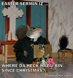 Image result for squirrels in the church joke