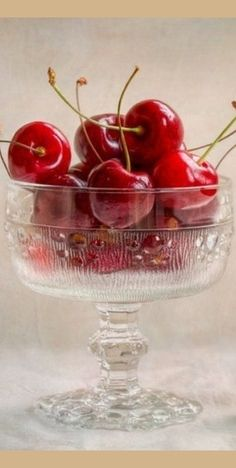 ♣#♣#♣#♣#♣ Fruit ♣#♣#♣#♣#♣