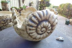 Flower Pots - Ceramic Ammonite Bowl Medium - a unique product by Michaela-Theis on DaWanda Ceramic Teapots, Ceramic Pottery, Flower Planters, Flower Pots, Small Front Yard Landscaping, Coil Pots, Cement Crafts, Paris Art, Pottery Classes
