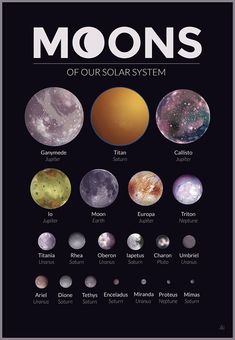 illustration of all of the major moons in our solar system. Jupiter's got the prettiest moons.An illustration of all of the major moons in our solar system. Jupiter's got the prettiest moons. Astronomy Facts, Astronomy Science, Space And Astronomy, Hubble Space, Space Telescope, Space Shuttle, Solar System Planets, Our Solar System, Earth And Space Science