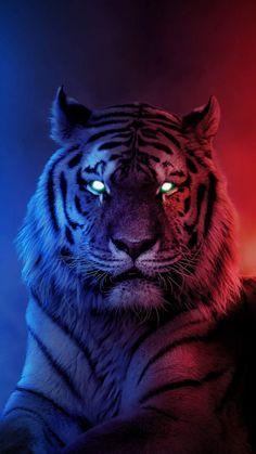 Alpha Tiger iPhone Wallpaper - iPhone Wallpapers
