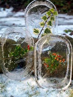 Winter Art for Kids. Get a Lid, fill it with water and something from nature, freeze it over night, and look at the great art it makes for winter fun. Yule, Forest School Activities, Snow Activities, Diy Nature, Nature Crafts, Noel Christmas, Christmas Crafts, Christmas Decorations, Christmas Garden