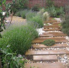 Pflanzen Kiesbeet Lavendel Ziergraser Mediterraner Garten
