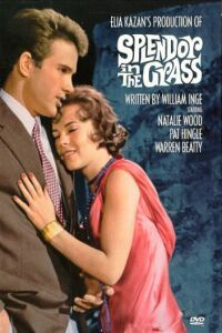"""Splendor in the Grass"" is my absolute favorite movie. It's from 1961, and has my favorite actress ever in it...the beautiful Natalie Wood. Also, Warren Beatty is hot hot hot in his very first movie. It's a very dramatic love story and quite the tearjerker!"