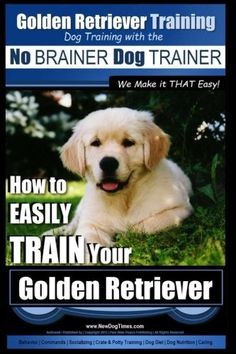 Golden Retriever Training | Dog Training with the No BRAINER Dog TRAINER ~ We Make it THAT Easy!: How to EASILY Train Your Golden Retriever (Volume 1) *** Read more reviews of the product by visiting the link on the image.