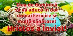 Ziua de duminică să vă aducă în dar numai fericire și multă sănătate! Hristos a Înviat! Paste, Easter Wishes, Happy Easter, Happy Easter Day