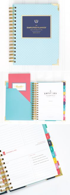 Emily Ley 2016 Daily Simplified Planner in Mint Dot