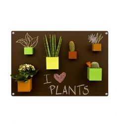 KalaMitica magnetic pots. Pretty cool idea not only for plants ...