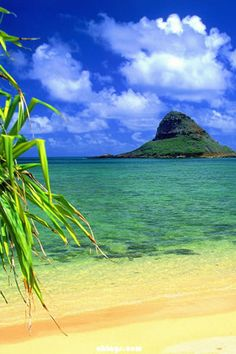 Chinaman's Hat, Oahu, Hawaii. So named because of the resemblance. Bunny & I took Jess & Gibbes here. I have a photo of Gibbes at age two, playing naked in the water here.