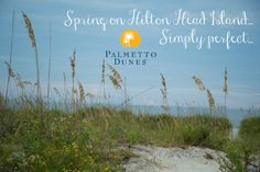 Spring on Hilton Head Island... Simply perfect...