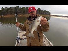 Prespawn Bass Fishing