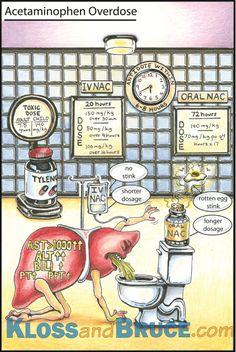 Acetaminophen or Paracetamol Overdose was the first illustration where I chose to anthropomorphise an organ.and so, Liver-Man was born! Nurse Teaching, Nursing Information, Rn School, Mental Health Nursing, Psychiatric Nursing, Nursing School Notes, Pharmacology Nursing, Emergency Medicine, Medical Illustration