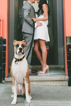© Vivian Sachs Photography | Daily Dog Tag | Dog-included-in-engagement-photos