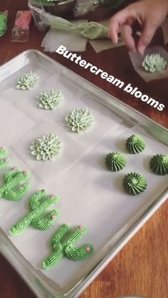 Piping buttercream cacti and succulent! Piping buttercream cacti and succulent! Cake Decorating Piping, Birthday Cake Decorating, Cake Decorating Techniques, Cake Decorating Tutorials, Cookie Decorating, Decorating Ideas, Piping Buttercream, Buttercream Flowers, Frosting