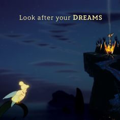 """#PeterPan #tinkerbell """"Look after your dreams"""""""