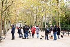 Finding the perfect boutique hotel in Paris with Hotel Tonight - People walking their dogs in Jardin du Luxembourg.