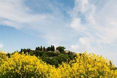 Photo by Elaine Poggi of Tuscany, Italy