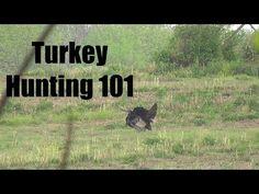 Turkey Calling: Greatest Mistake Of Calling Hens. How To Call Turkeys. Hunting Tips, Deer Hunting, Turkey Calling, Waterfowl Hunting, Best Turkey, Game Birds, Turkey Hunting, Hens, Survival