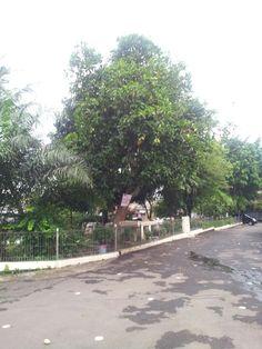 Morning at Taman Yado, Radio Dalam. Jaksel. Tempat senam Yayasan Jantung Sehat Indonesia, KJS Yado. Lokasi TPS saat Pemilu. Tempat main bola anak2 sekitar. Terlihat becek, sisa hujan kmrn.