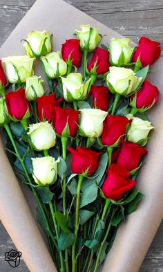 Flower Delivery - Send Flowers - The Bouqs Co.