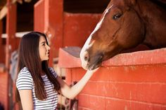 Therapy and Horsepla