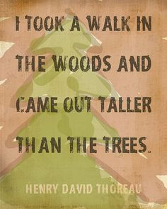 Wise Words, Words Of Wisdom, True Words, Woods Quote, Quotes Henry David Thoreau, The Great Outdoors, American Hippie, Walk In, Great Quotes
