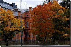 Autumn in Vaasa, Finland