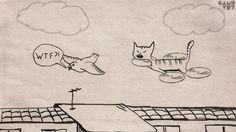 Quadrocat. #quadrocopter #quadrocat #geekhumor #youtube