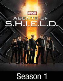 Entertainment - Favorite TV Series : Marvel's Agents of S.H.I.E.L.D.: Season 1 (2013)