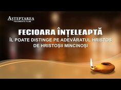 #Filmul_Evangheliei #Evanghelie #Împărăţia #creștinism #Iisus #biserică #pastorului Bible, Elm Tree